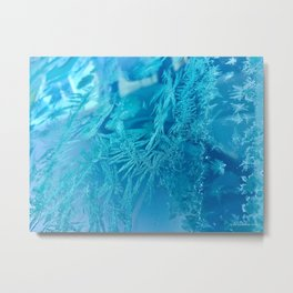 Hoar Frost Ice Crystals Metal Print