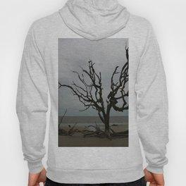 Ghost Tree Beach Hoody