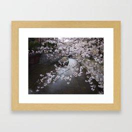 cherry blossoms in Japan Framed Art Print