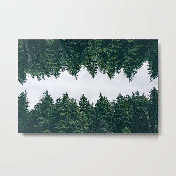Forest Reflections X Metal Print