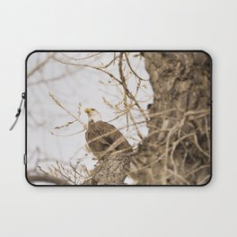 Bald Eagle Perched in Tree Laptop Sleeve