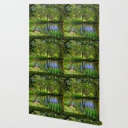 Spring views Wallpaper