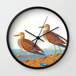 Pectoral Sandpiper Bird Wall Clock