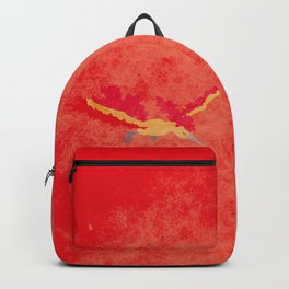 146 mltres Backpack