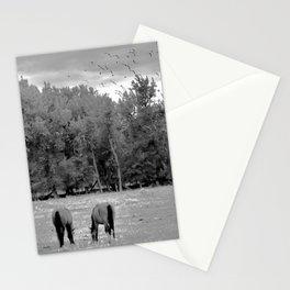 Hooves and Wings Stationery Cards