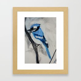 Blue Jay Wild Bird Acrylic Painting Framed Art Print