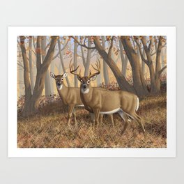 Whitetail Deer Trophy Buck and Doe in Autumn Art Print