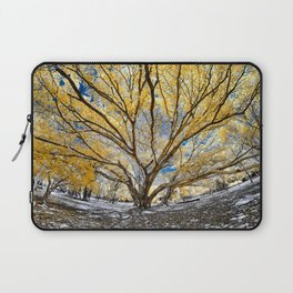 Gorgeous Big Tree Laptop Sleeve