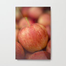 Red Gala Apple Metal Print