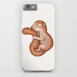 Hibernating squirrel iPhone Case
