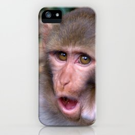 Young Rhesus Macaque with Food in Cheeks iPhone Case