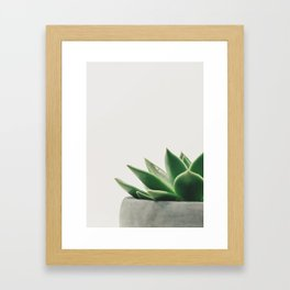 Minimal Cactus - Cacti Photography Framed Art Print