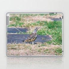 summer Visit Laptop & iPad Skin