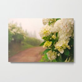 Dirt road Metal Print