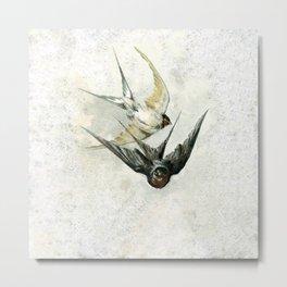 Vintage Soaring Birds Metal Print
