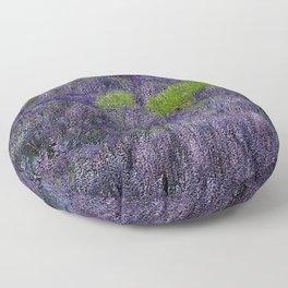 Lavender Fields Floor Pillow