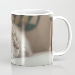 Sweet lullaby. Cat nap. Coffee Mug