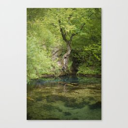 River spring in the forest Canvas Print