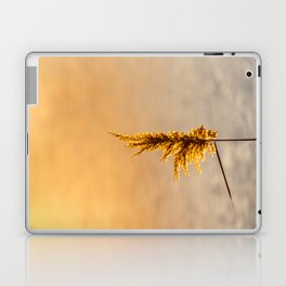 Reed tip in Camargue Laptop & iPad Skin