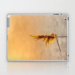 Reed tip in Camargue Laptop & iPad Skin