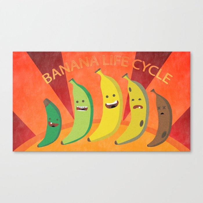 Banana Life Cycle Canvas Print