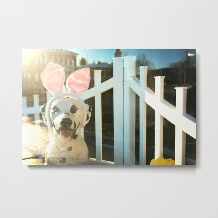 Plastic Pet Metal Print