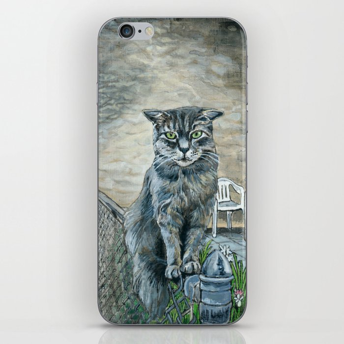 Cat on a Fence iPhone Skin