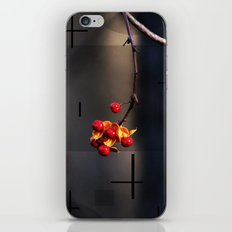 Berries And Mystical Shapes iPhone & iPod Skin