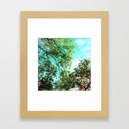Looking Above Framed Art Print