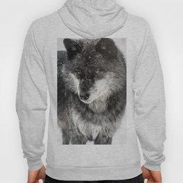 Alpha Wolf Hoody