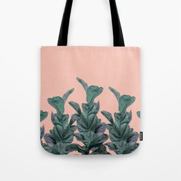 Rubber trees in group with beige pink Tote Bag