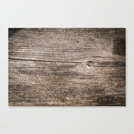 The old boards . Wood . Canvas Print