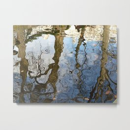 Reflections below the Medici Fountain,Luxembourg Gardens, Paris Metal Print