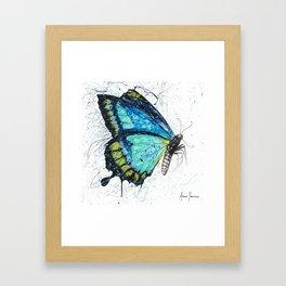 Morning Citrus Butterfly Framed Art Print