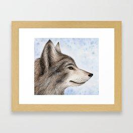 Eastern Wolf Framed Art Print