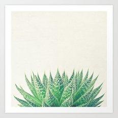 Lace Aloe Art Print
