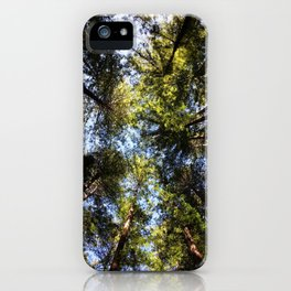 Redwood Canopy iPhone Case