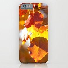 Embers IV iPhone 6s Slim Case