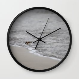 Lonely Sandpiper Wall Clock