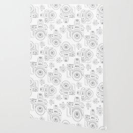 Grey Cameras Wallpaper