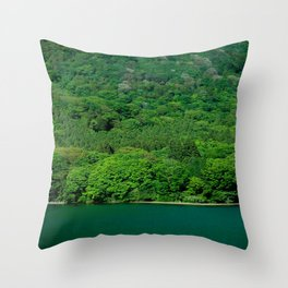 Heat Wave Hakone Throw Pillow