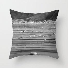 Stones on the beach. Throw Pillow