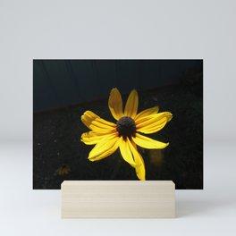 Shady Susan Mini Art Print