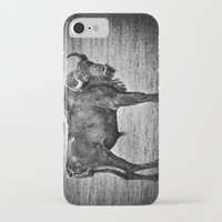 buffalo iPhone & iPod Cases featuring Buffalo by davehare