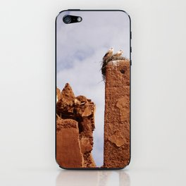 Storks on the ruins of the Sultan's Palace iPhone Skin