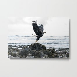 West Coast Eagle Metal Print