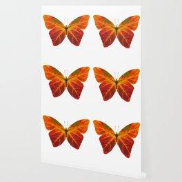 Aspen Leaf Butterfly 2 Wallpaper