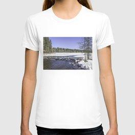 Pure Mississippi T-shirt