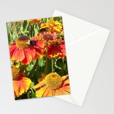 Sweet as a Bee and Daisies Stationery Cards