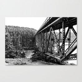 A Bridge into the Woods Canvas Print